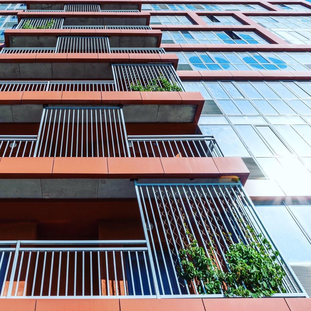 Вертикальное озеленение домов!